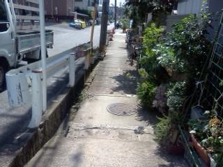 egawa-shiryuu1.jpg