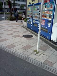 gotannda-mannho-ru.jpg