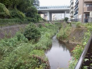 hayabchigawa-motoishikawa.jpg