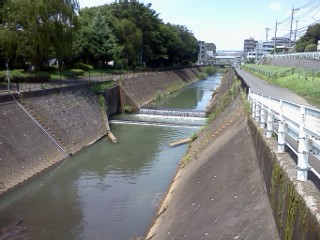 hayabuchigawa-nakagawa3.jpg