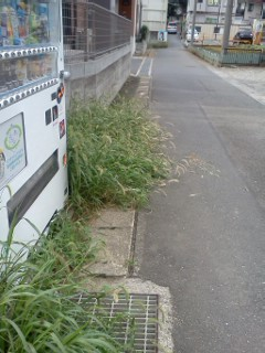 hisasue-nakaharagawa2.jpg