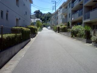 kanigaya5.jpg