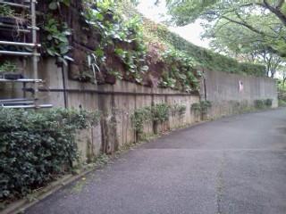 kokugakuinn5.jpg