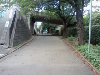 kokugakuinn6.jpg