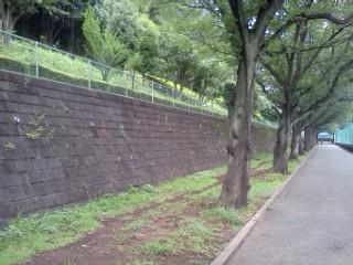 kokugakuinn7.jpg