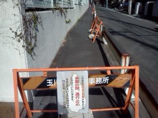 mamusisawa2.jpg