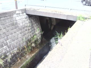 motoishikawa-gouryuu.jpg