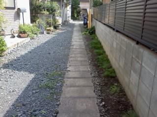 musashi-shita2.jpg