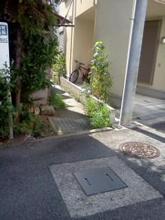 noumannji-nishi1.jpg