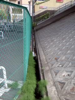 nunokawa-kousokushita.jpg