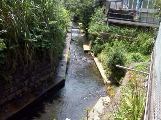 nunokawa-shiryuu-azaminominami2.jpg