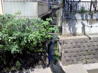 nunokawa-shiryuu-fitcare.jpg