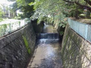 nunokawa1.jpg