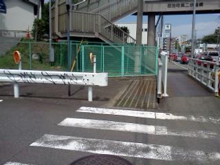 nunokawa5.jpg