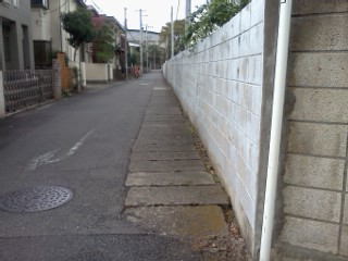 shibukawa-housei1.jpg