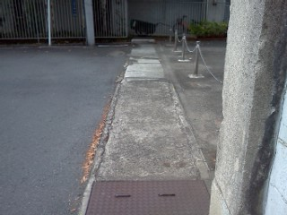 shibukawa-housei2.jpg