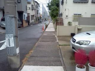 shibukawa-usui-shiryuu.jpg
