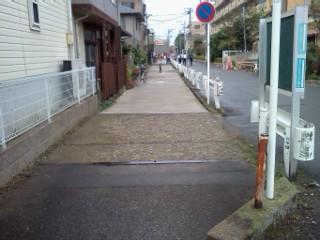 shibukawa-usui1.jpg