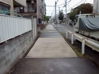 shibukawa-usui3.jpg