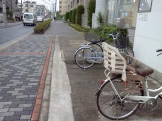 shibukawa-usui4.jpg