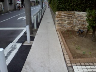 shibukawa-usui8.jpg