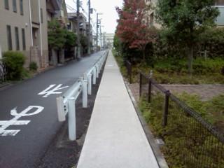 shibukawa-usui9.jpg
