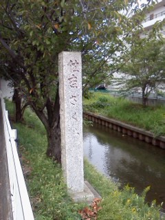 shibukawa17.jpg