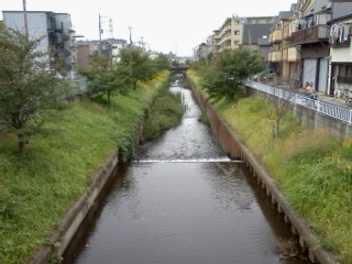 shibukawa18.jpg