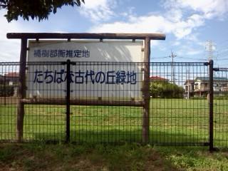 tachibanakodainooka.jpg