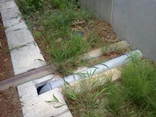 tsuduki-2-1-ryuunyuu.jpg