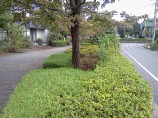 yatogawa-annkyo4.jpg