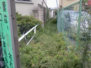 yatogawa-annkyo8.jpg