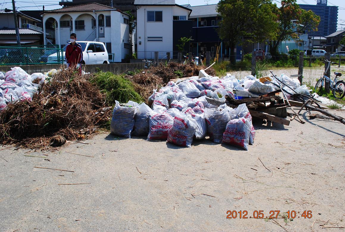 ⑤和白干潟(回収したゴミ)DSC_0092a1