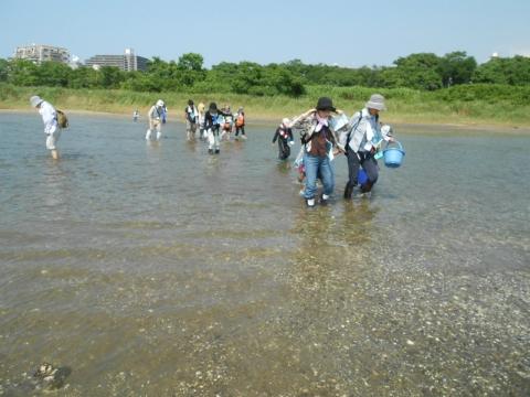 唐の原川河口を渡る