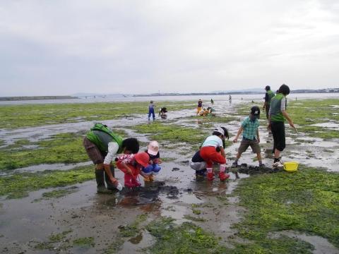 ③干潟の生き物観察IMGP0390a0