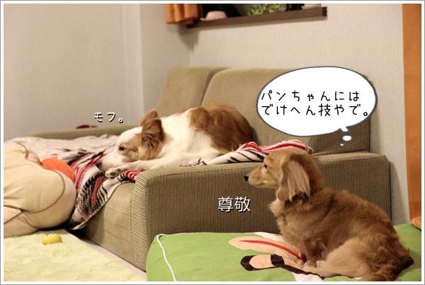 IMG_09791.jpg
