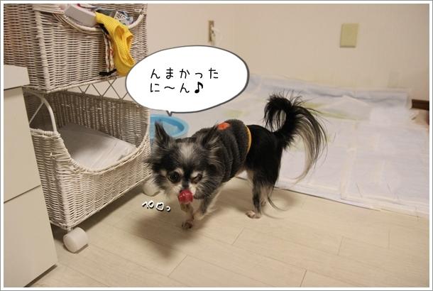 IMG_168211.jpg