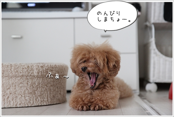 IMG_33061.jpg