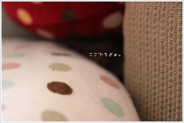IMG_36351.jpg