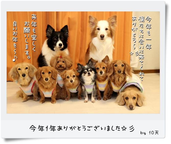 IMG_39041.jpg