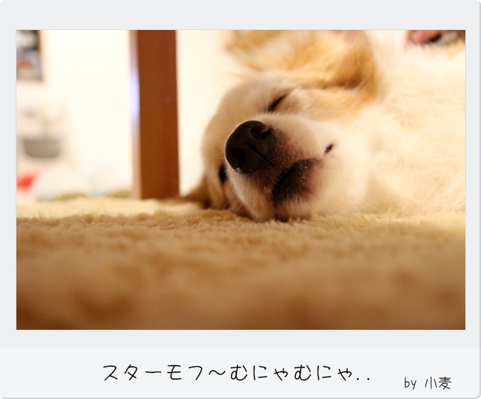IMG_52161.jpg