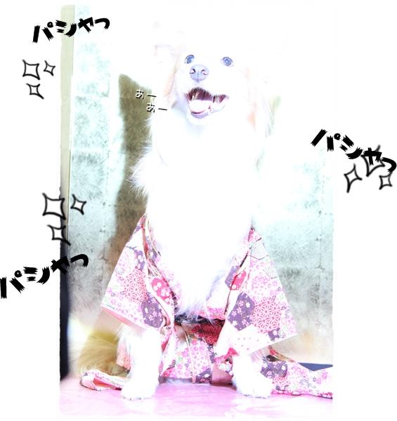 IMG_87791.jpg