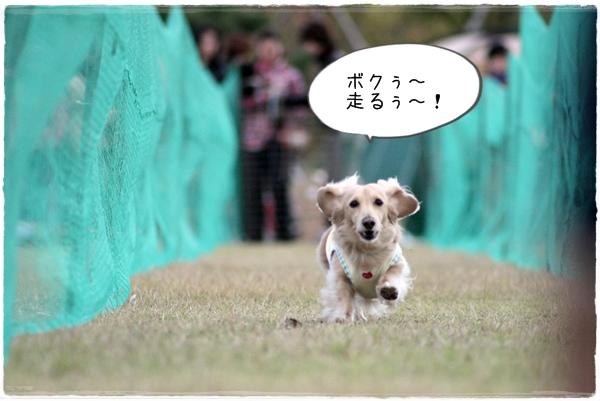 IMG_90901.jpg
