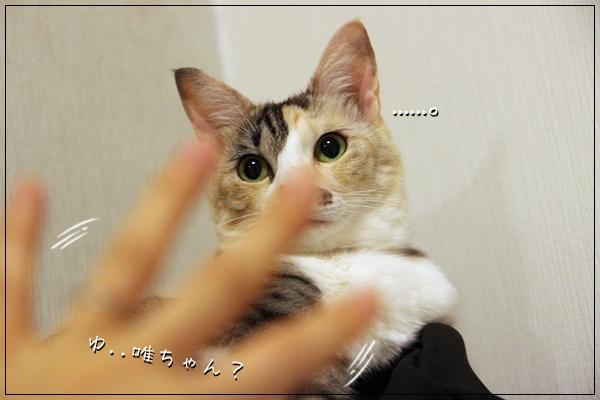 IMG_90921.jpg