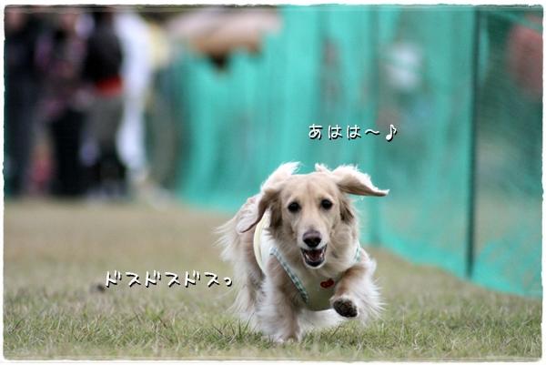 IMG_91221.jpg