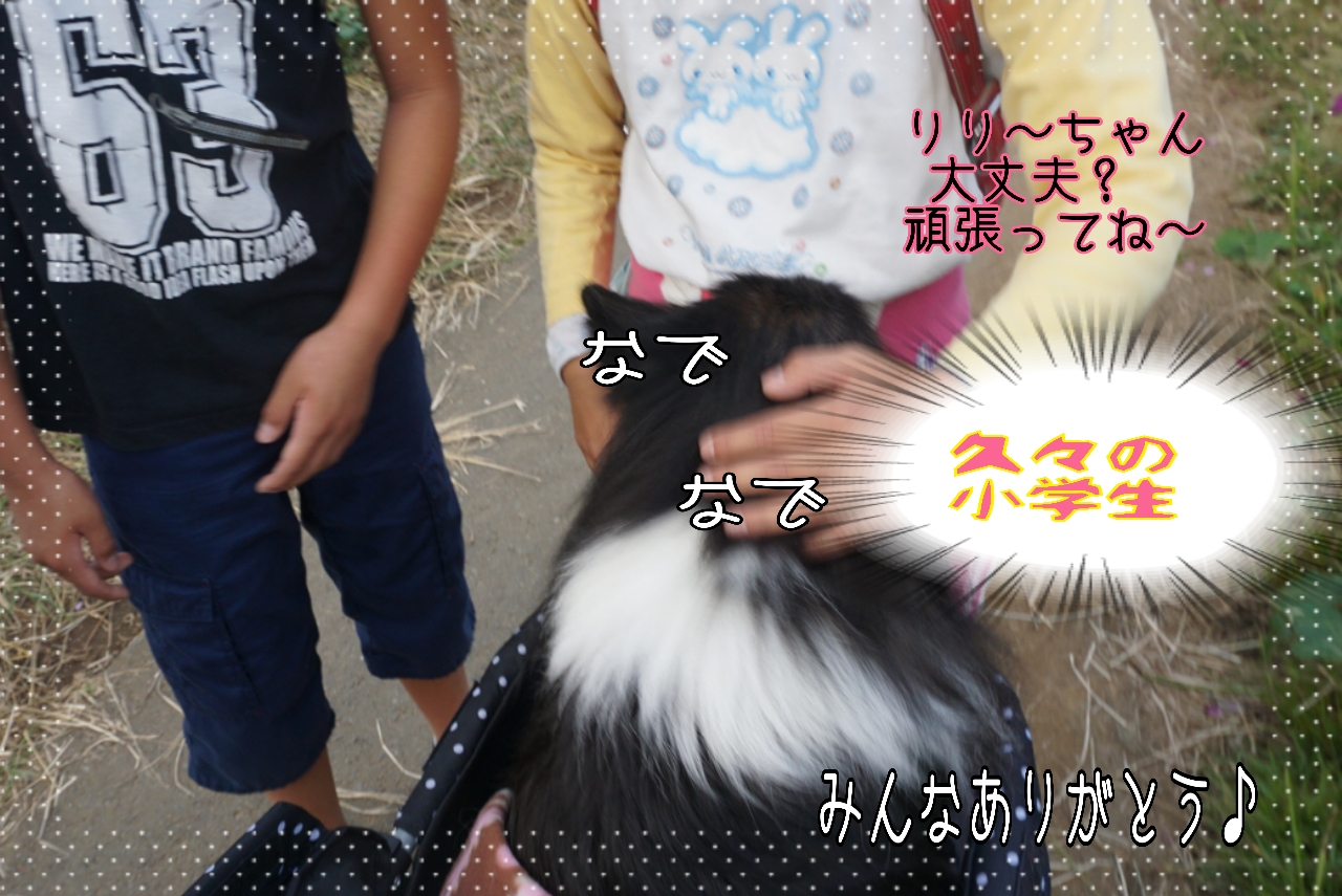 2014-10-09-19-02-34_deco.jpg