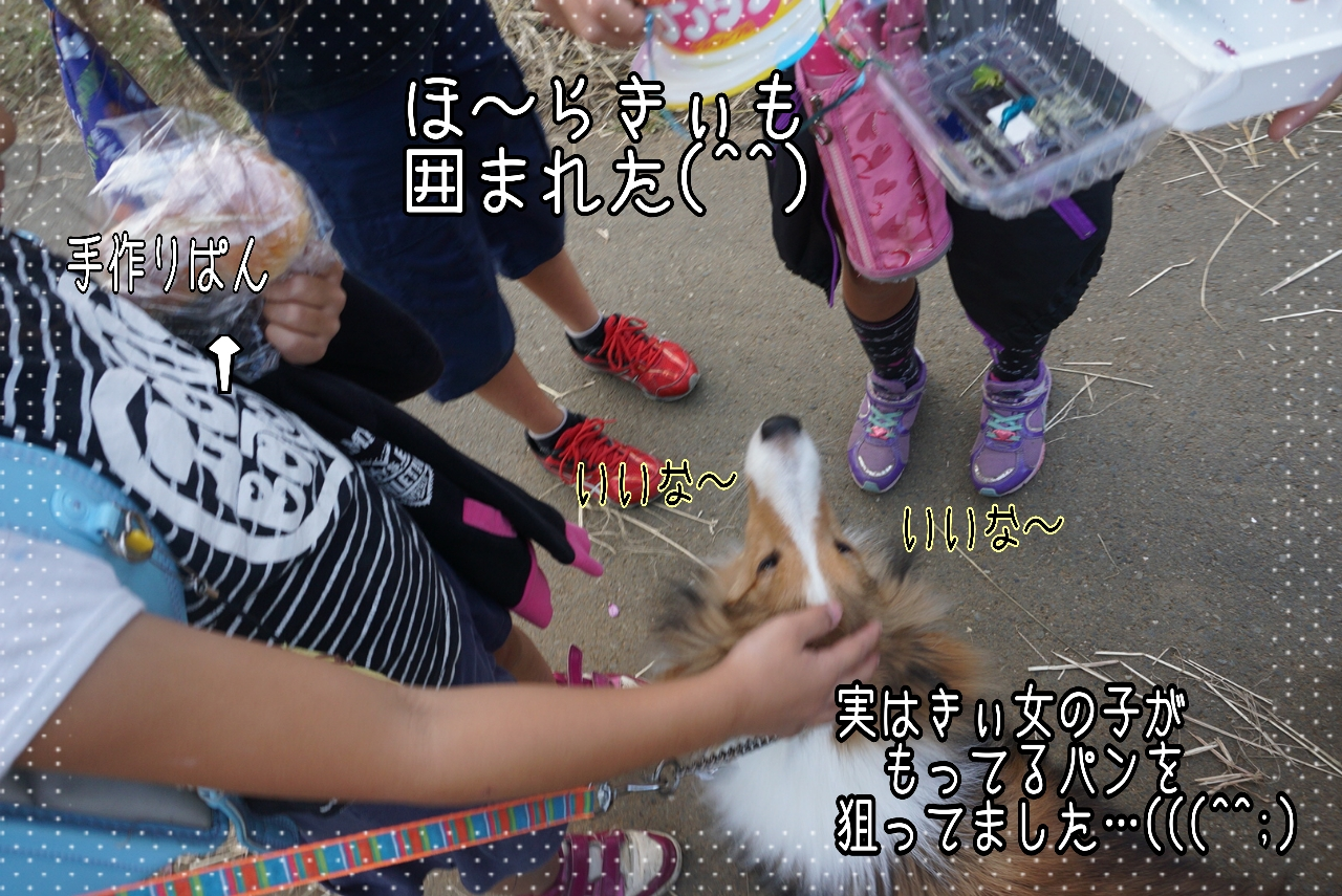 2014-10-09-19-07-27_deco.jpg