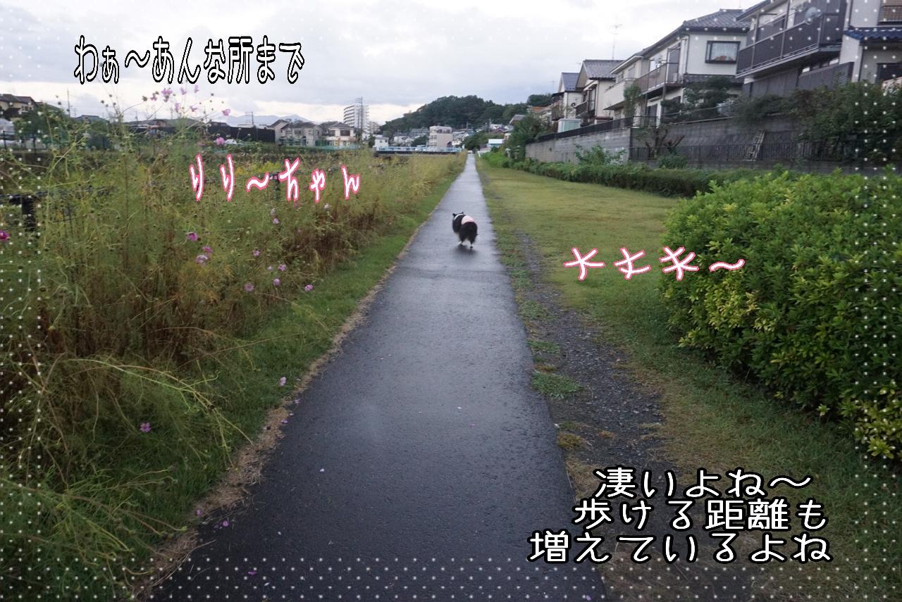 2014-10-14-07-36-06_deco.jpg
