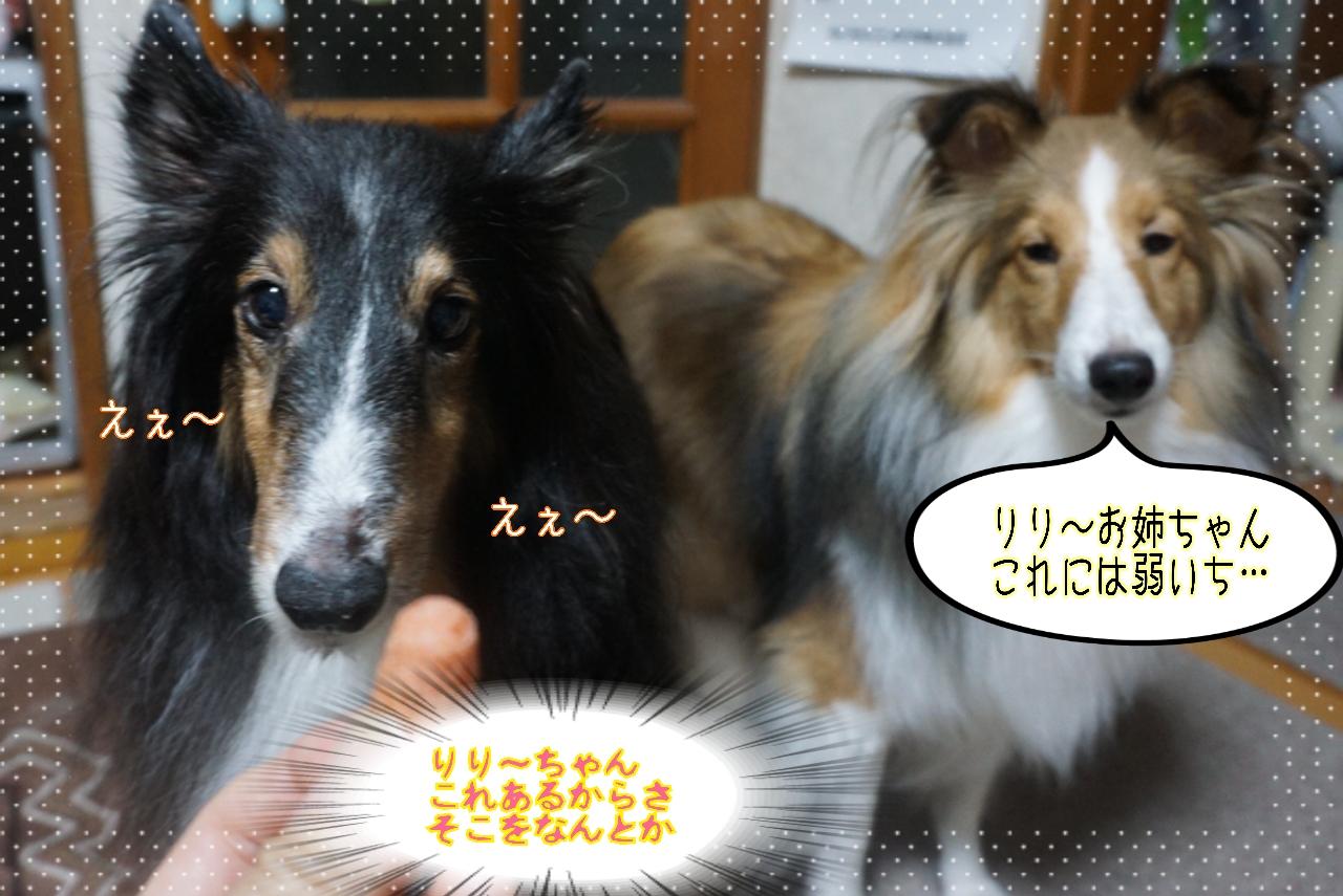 2014-10-21-02-06-23_deco.jpg