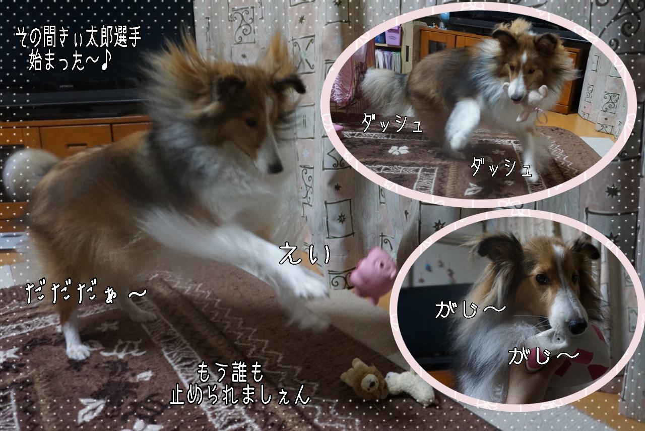 2014-10-24-01-29-06_deco.jpg